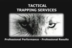 Tactical Trapping Services