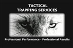 Trapping Services